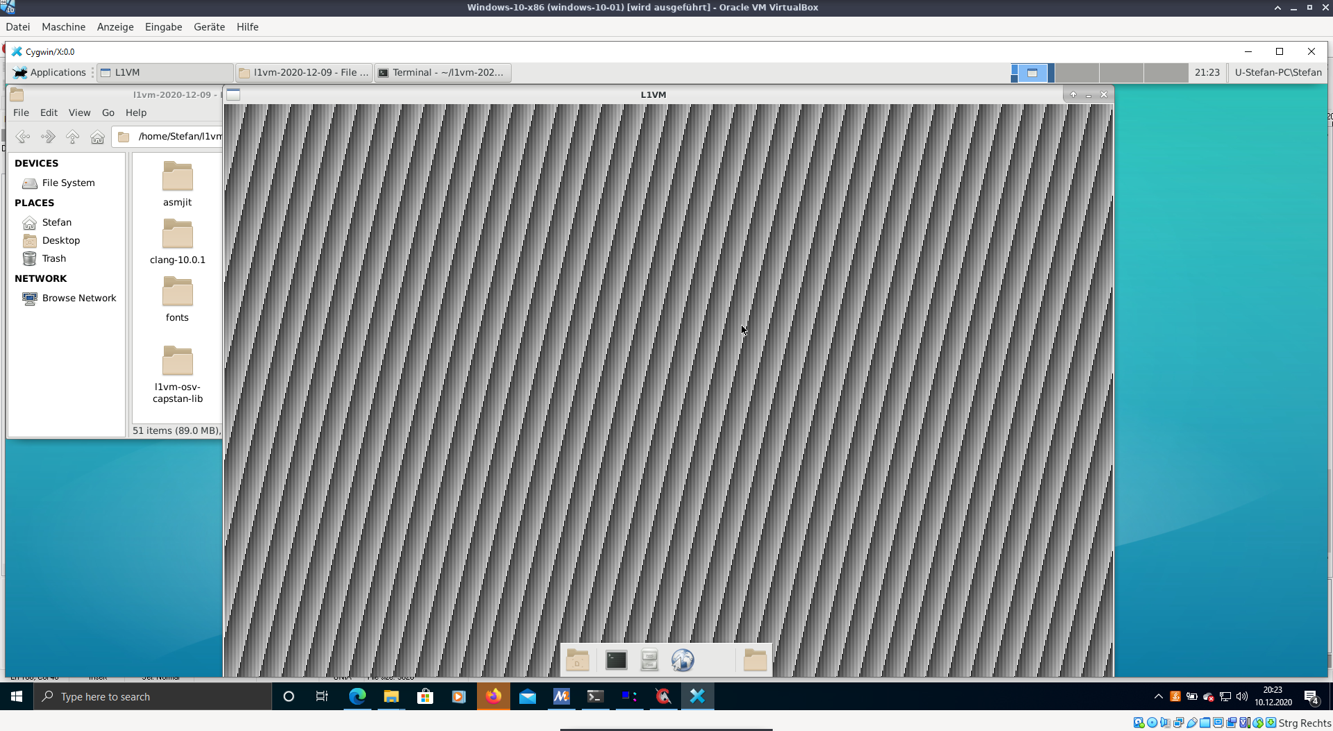 L1VM Windows Cygwin screenshot